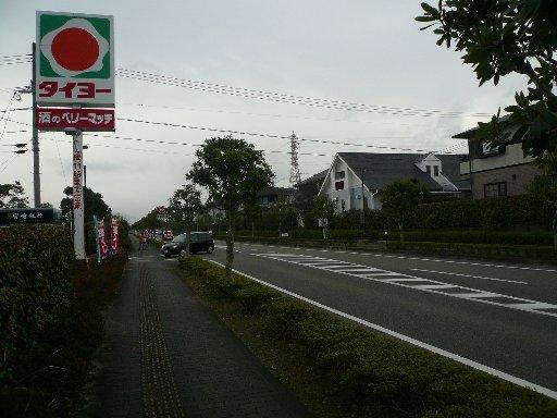 P1060560.jpg